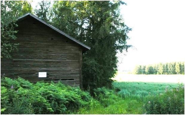 ПРЕБЫВАНИЕ ГОСУДАРЯ НИКОЛАЯ II С СЕМЬЕЙ И СВИТОЮ  В ФИНСКИХ ШХЕРАХ